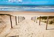 way to the beach - 41832922