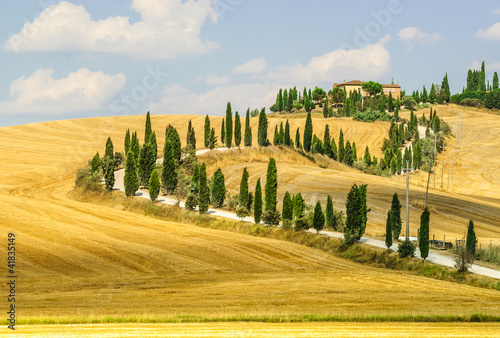 Old farm in Val d'Orcia (Tuscany) - 41835149