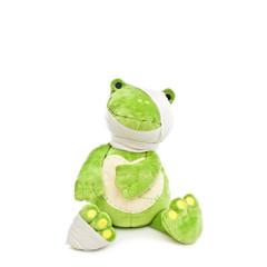 frosch mit bandage