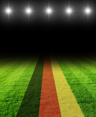 fussballfeld mit deutschland flagge - beleuchtet