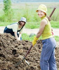 women works with  manure at field