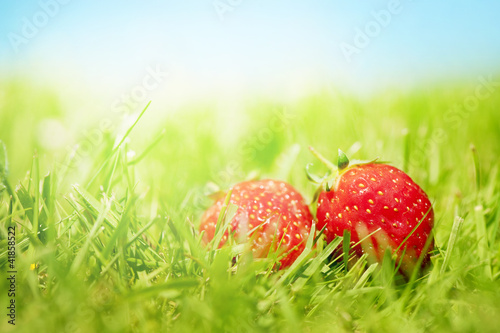 Two strawberries on the grass