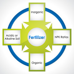 Types of fertilizer. Diagram