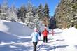Skifahrer im Thüringer Wald