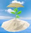 concept protection de l'environnement