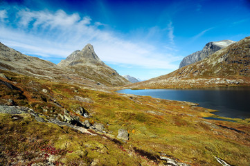 Little lake in the mountains on the green meadow in Norway