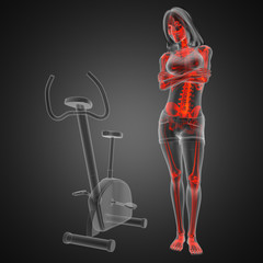 woman  radiography scan in gym room