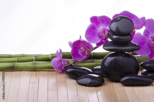 orchidea con pietre nere e bambù