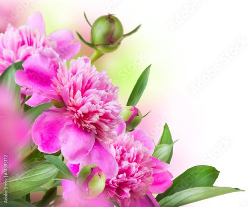 Peony Flowers Bouquet