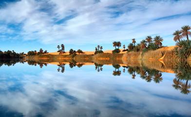 Oasis reflectiob