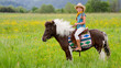 Horseback  riding - lovely cowgirl is riding a pony - 41902325