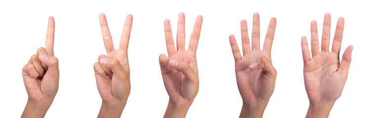 Image of Counting woman's finger (1 to 5)