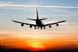 Plane landing by sunrise - 41906528