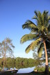 Guyane - Montsinéry - Fleuve