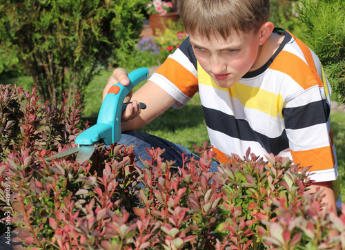 Boy cutting a bush
