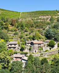 Terraced Vineyards of Malevall France