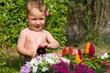 Kleiner junge Wässert Blumen