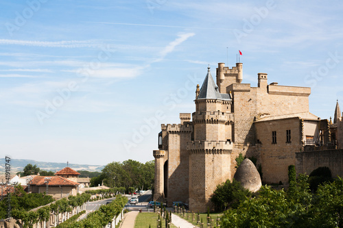 Olite's Castle in Navarra