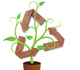 recycle symbol with green young plant