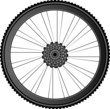Bike wheel - vector illustration on white