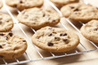 Fresh Chocolate Chip Cookies