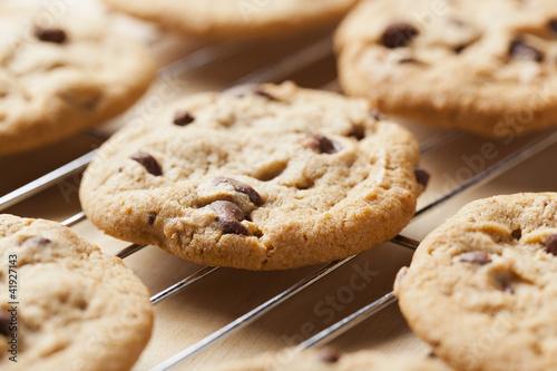 Fresh Chocolate Chip Cookies