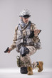 modern soldier