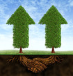 Business Partnership Growth