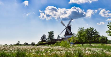 Wind mill in Egeskov, fyn, Denmark