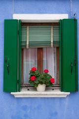 finestra con gerani - Burano (Venezia)