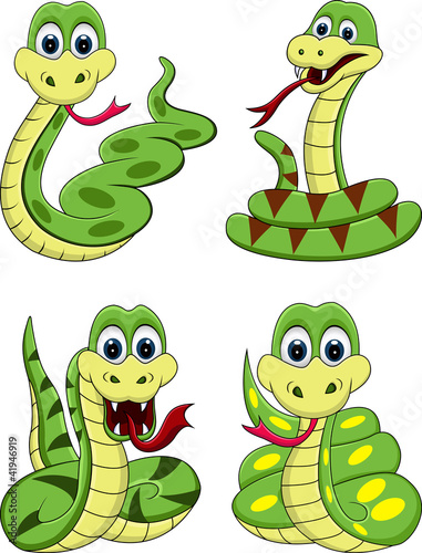 funny snake collection