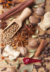Spices and herbs over bamboo mat