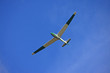 glider - 41951928