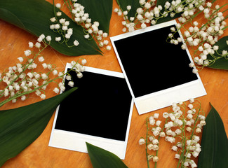 old photographs and flowers on wooden background