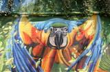 perroquet - 41954793