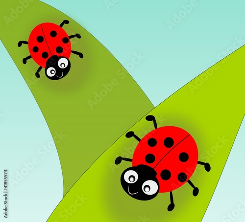 Foto op Canvas Lieveheersbeestjes Two cute ladybugs on green leafs.