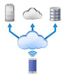 Wireless cloud computing network