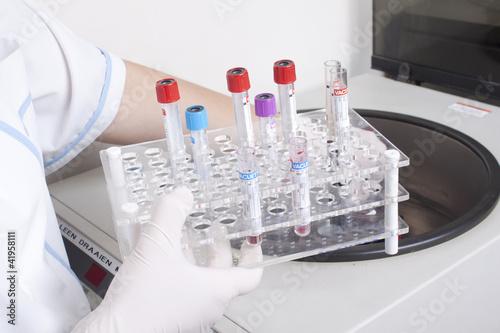 Hands loads blood samples in centrifuge