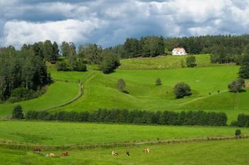 Djursdala, Småland