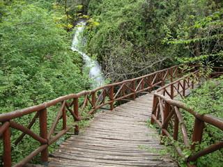 Springs of Naoussa, Central Greece
