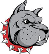 bull dog guard head