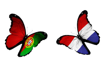 Concept - two butterflies with Netherlandish and Portuguese flag
