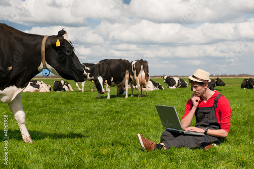Young farmer with laptop in field with cows