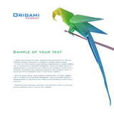 Fototapety origami parrot on a branch