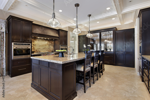 Luxury kitchen with dark cabinetry