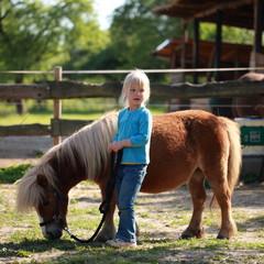 kleines Mädchen führt Pony spazieren
