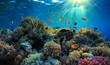 canvas print picture - Underwater view