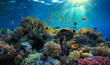 Leinwandbild Motiv Underwater view