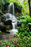 Fototapety Beautiful waterfall in the garden