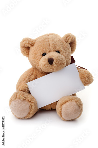 Teddy bear holding white banner